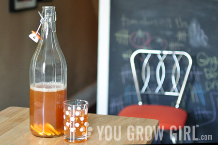 how to make kombucha scoby from a bottle
